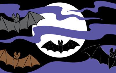 Draw a Vampire Bat!