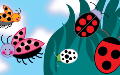Draw a ladybug. You can do it!