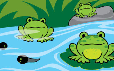 It's Easy to Draw a Frog!
